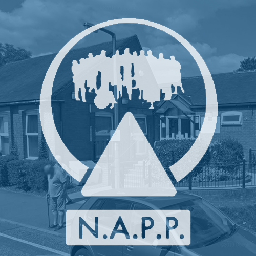 nappnewslettericon